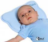 Test et Avis du Coussin anti tête plate Koala Babycare
