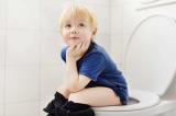 Comparatif des meilleurs Réducteurs de toilette en 2020
